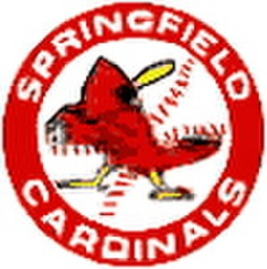 Springfield (IL) Cardinals - Image: Springfield IL Cardinals