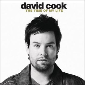 The Time of My Life (David Cook song) - Image: The Time of My Life (David Cook single cover art)