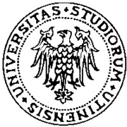 Logo of the University of Udine