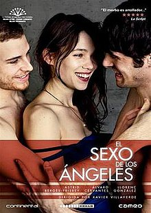 Angels of Sex DVD Cover.jpg