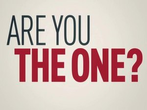 Are You the One? - Image: Are Youthe One Logo