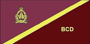 The British Columbia Dragoons - The camp flag of The British Columbia Dragoons.