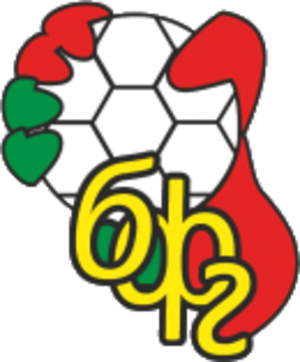 Belarus national handball team - Image: Belarus national handball team logo