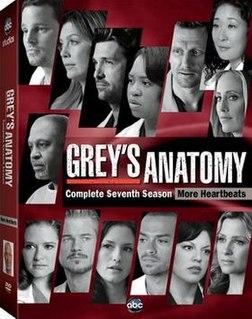 <i>Greys Anatomy</i> (season 7)