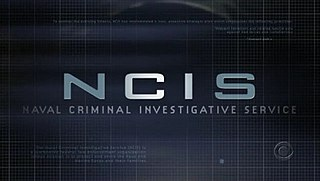 <i>NCIS</i> (TV series) American military drama/police procedural fictional television series