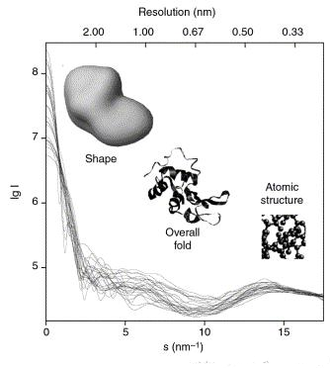 Biological small-angle scattering - X-ray solution scattering curves computed from atomic models of twenty-five different proteins with molecular masses between 10 and 300 kDa.