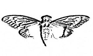 Cicada 3301 - Cicada 3301 logo