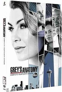 <i>Greys Anatomy</i> (season 14)
