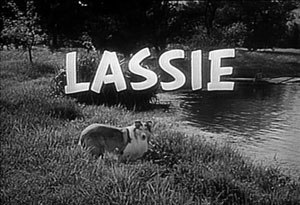 Lassie (1954 TV series) - Title screen of Lassie (seasons 1–4)