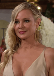 Sharon Newman fictional character from the American soap opera The Young and the Restless