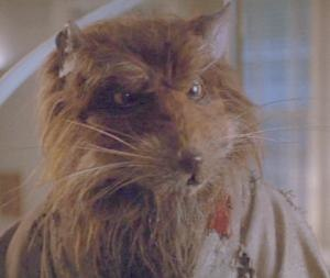 Splinter (Teenage Mutant Ninja Turtles) - Splinter in a scene from Teenage Mutant Ninja Turtles II: The Secret of the Ooze