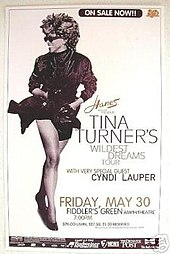 Tina Turner Wildest Dreams Tour