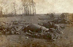 Battle of Le Cateau - British dead at the Battle of Le Cateau.