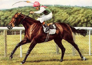 Dancing Brave American-bred Thoroughbred racehorse