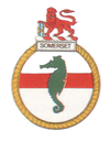 SAS Somerset badge.png
