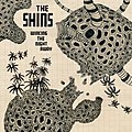 The Shins - Wincing the Night Away (2007)