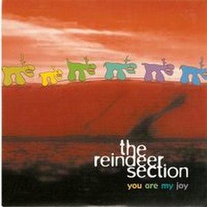 You Are My Joy - Image: Youaremyjoy