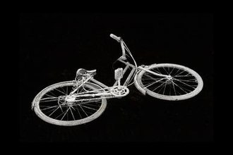 Will Gill - Bicycle/Leaf, 2013