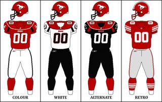 2010 Calgary Stampeders season
