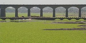 Daund - A bridge over the Bhima river in Daund