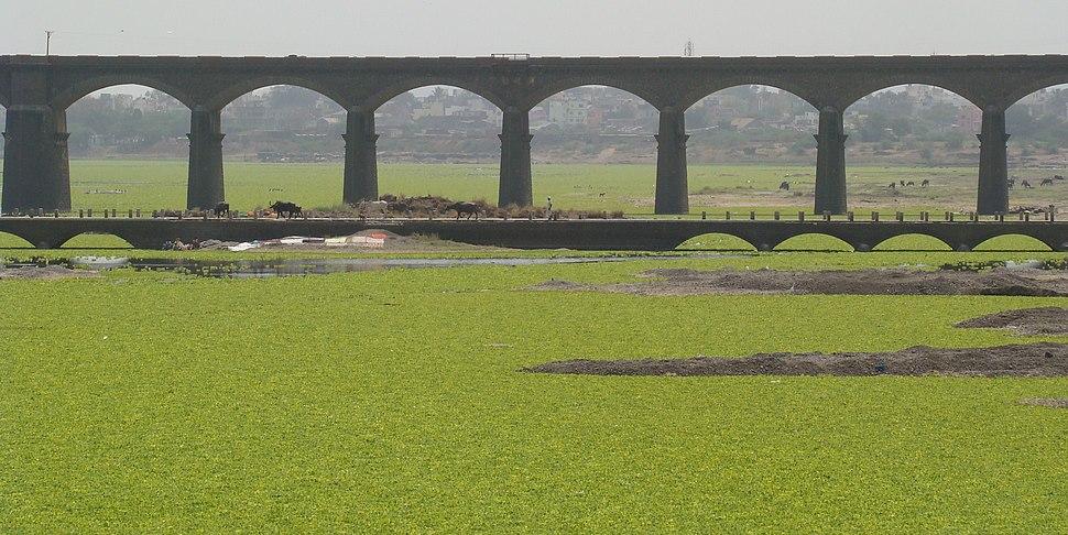 Daund Bridge