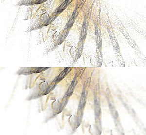 Fractal flame - A demonstration of Density Estimation. In the above half, you can see the noise and individual samples. On the below half, rendered with Density Estimation, the noise is smoothed out without destroying the sharp edges.