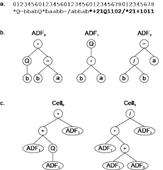 Gene expression programming - Expression of a multicellular system with three ADFs and two main programs. a) The chromosome composed of three conventional genes and two homeotic genes (shown in bold). b) The ADFs encoded by each conventional gene. c) Two different main programs expressed in two different cells.