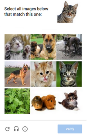 ReCAPTCHA - Image identification captcha