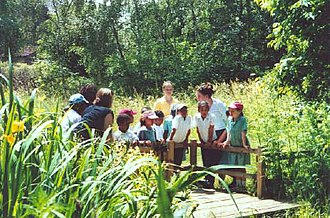 Railway Fields - A group of children learning about wildlife at the pond