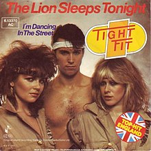 The Lion Sleeps Tonight by Tight Fit.jpg
