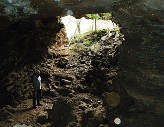 Haasgat - The Haasgat Fossil Site