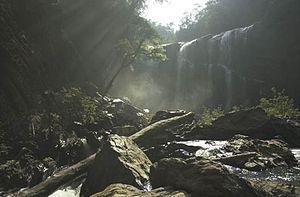 Sathodi Falls - An Early Morning View of Sathoddi Falls