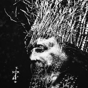 Zi (Negură Bunget album) - Image: Zi Album Cover