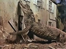 An alligator of over-sized and monstrous proportions slithers past a house located in a wet, tropical swamp.