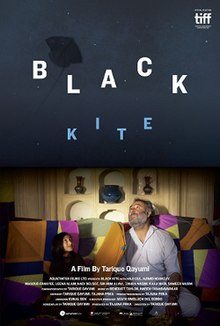 Resultado de imagen de black kite tarique qayumi