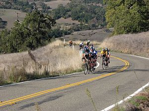 San Francisco Bay Area - A paceline of drafting cyclists while ascending Mount Hamilton in Santa Clara county.