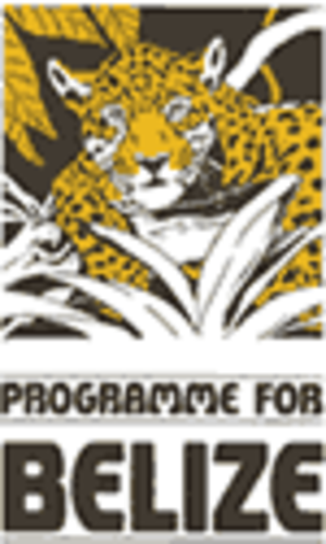 Programme for Belize - The logo of the project featuring a Jaguar