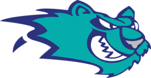Worcester IceCats - Image: Worcester Ice Cats