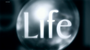 Life (UK TV series) - Series title card from UK broadcast