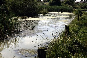 History of salt in Middlewich - Remains of Croxton Salt Works (1980s)
