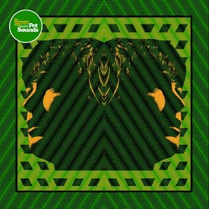 A Tribute to Pet Sounds - Image: A Tribute to Pet Sounds Reverberation