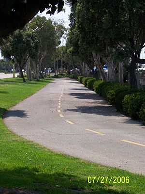 Marvin Braude Bike Trail - This is the bike path looking west at Admiralty Way and Fiji Way, where it once again becomes a Class 2 bike lane.