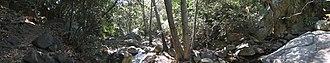 Rattlesnake Canyon (Santa Barbara) - A panorama of Rattlesnake Canyon