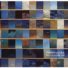Tindersticks the Something Rain cover.jpg