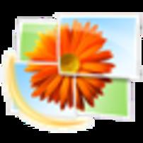 Windows Live Logo Windows Live Photo Gallery