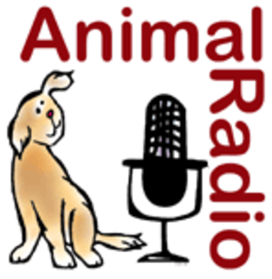 Animal Radio - Animal Radio