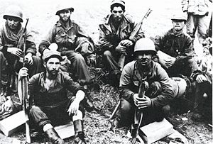 Borinqueneers: the only all-Hispanic unit in U...