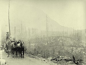 Eagle Pass (British Columbia) - Wagon road at the summit of Eagle Pass, c. 1885