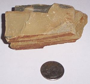 Martinsburg Formation - A sample of the Martinsburg shale from the Pennsylvania Turnpike (Northeast Extension) at mile post 66.