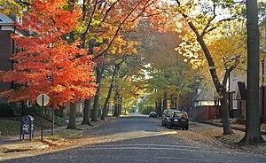 Parkview street